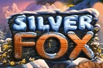 Silver Fox бесплатные слоты
