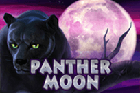 Panther Moon играть на деньги в клубе Вулкан