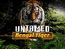 Untamed Bengal Tiger – игровой автомат на реальные деньги